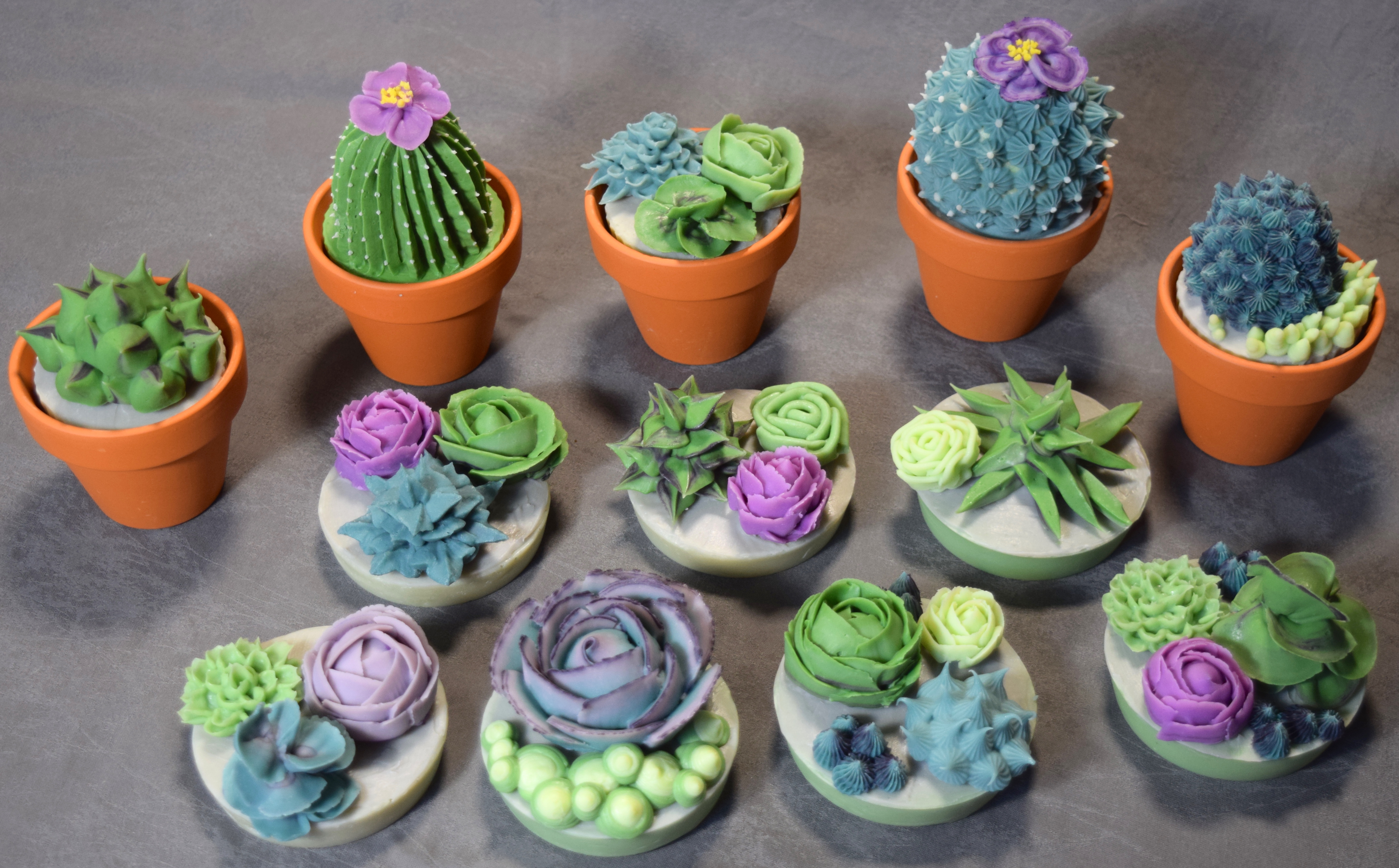 soapy succulents
