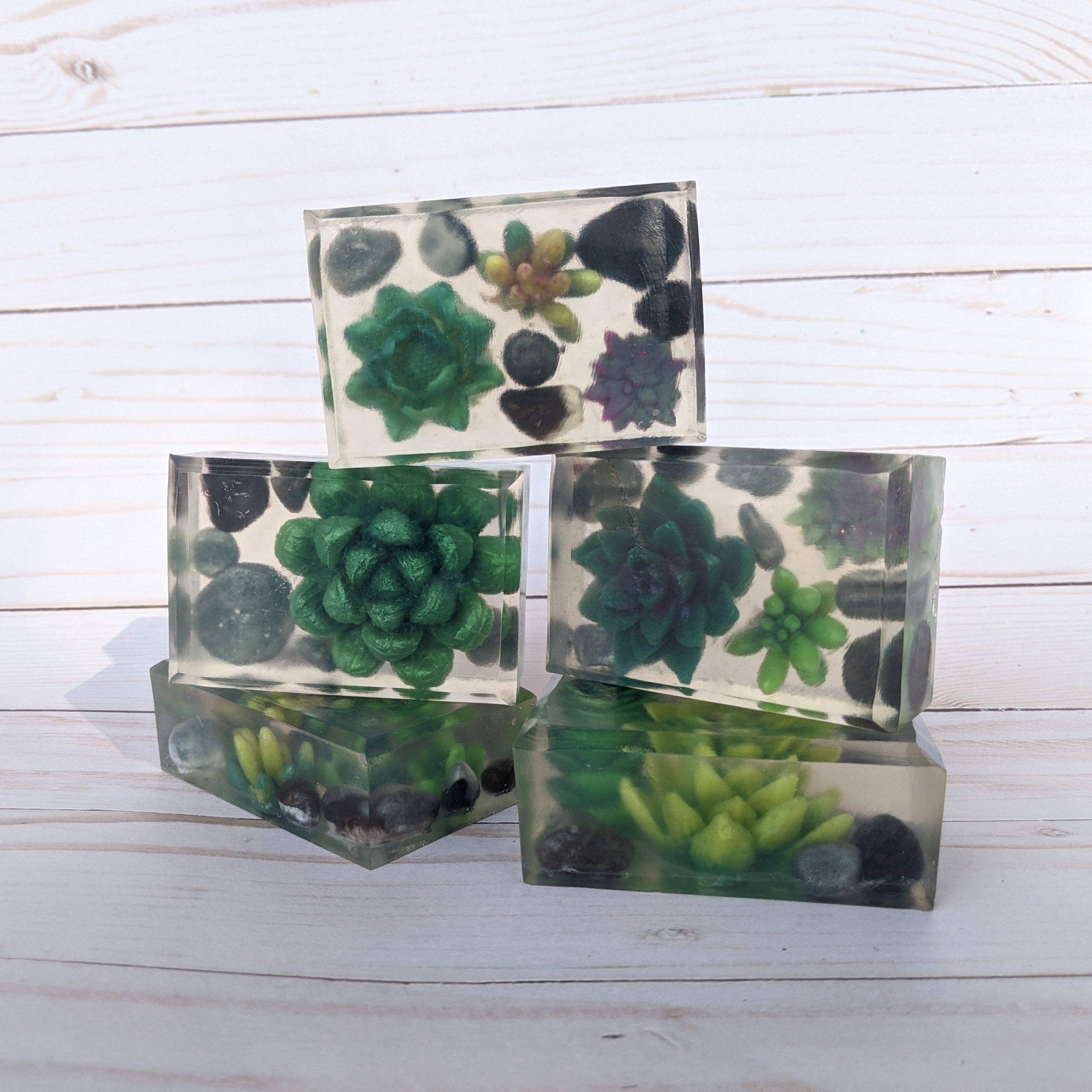 succulent greenhouses